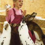 зоопарк в Рязани НИТИ, отметить день рождение интересно
